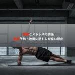 腰痛とストレスの関係、腰痛予防・改善に筋トレが良い理由