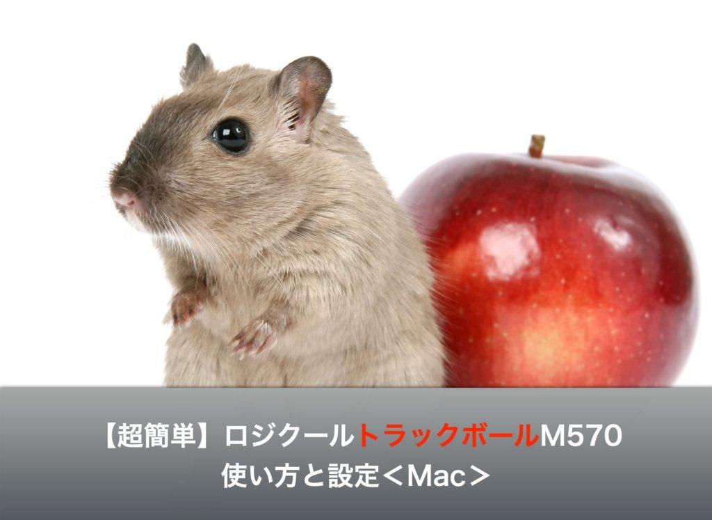 【超簡単】ロジクールトラックボールM570の使い方と設定<Mac>